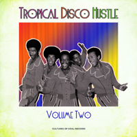 V/A - Tropical Disco Hustle Vol. 2